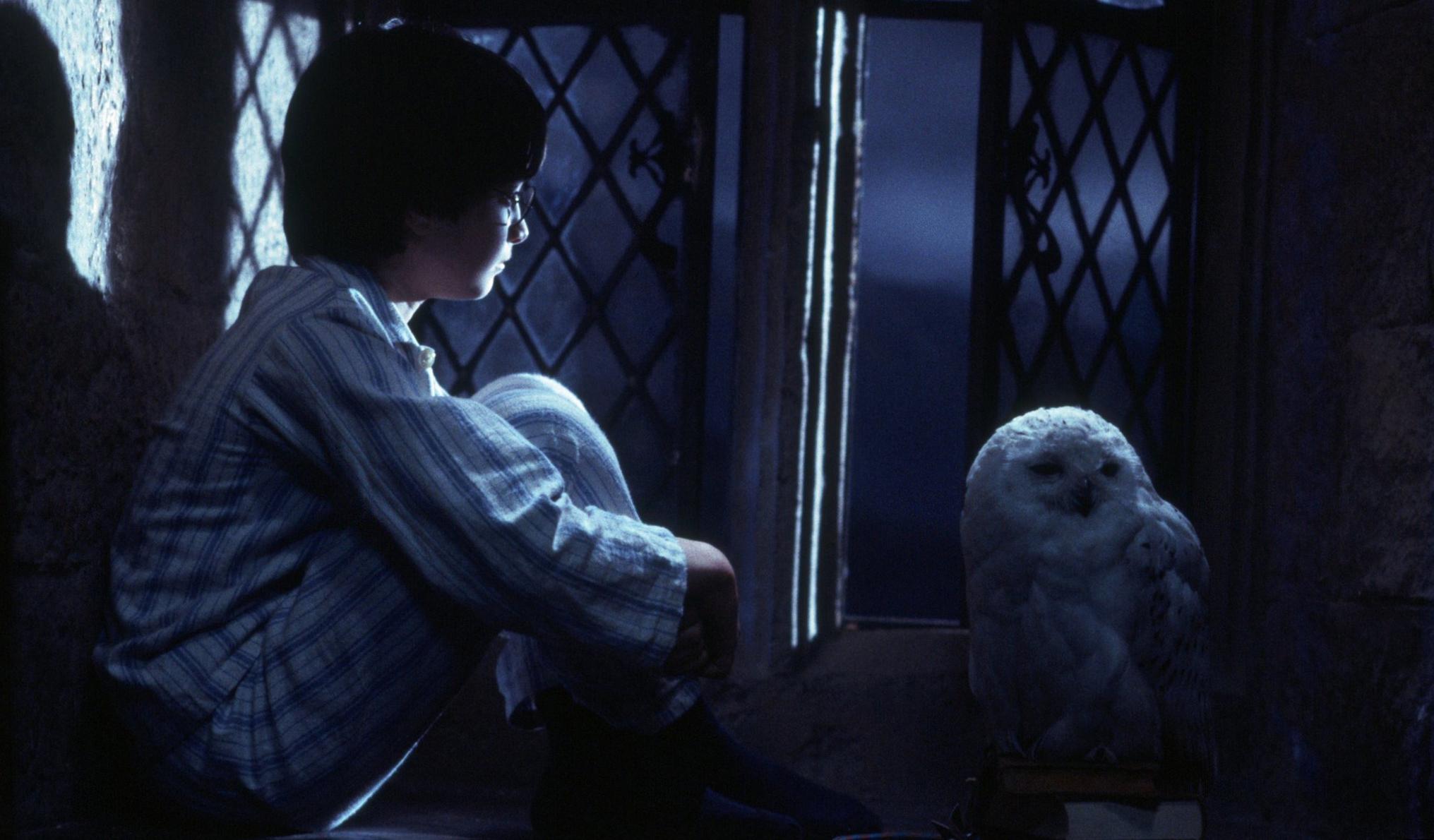 Harry Potter: a difesa della saga cinematografica