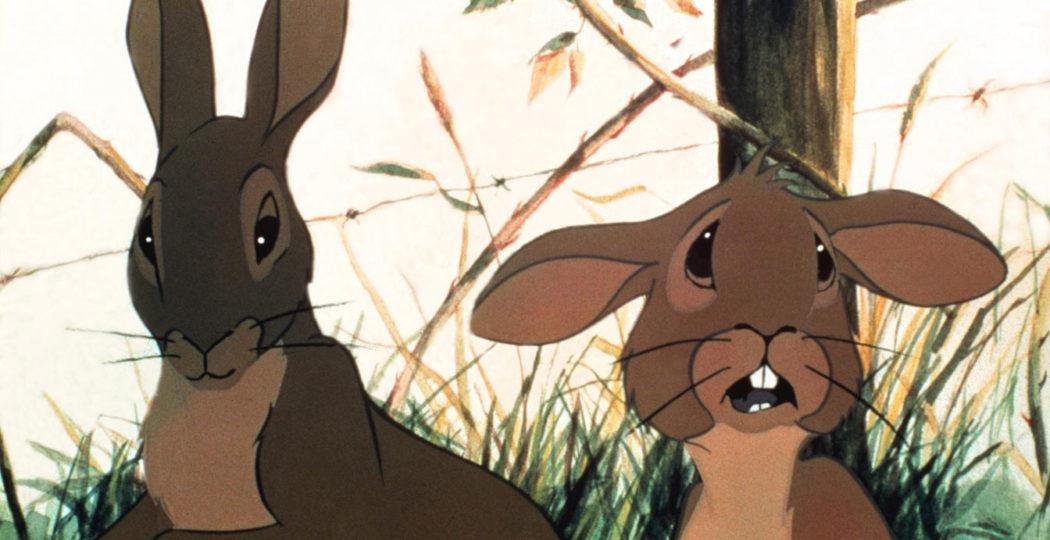 Disney ritrovato cartone animato del «È un coniglio l