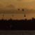 Apocalypse Now: una non recensione